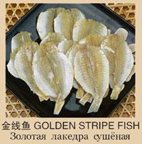 золота лакедра сушена
