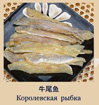 королівська рибка